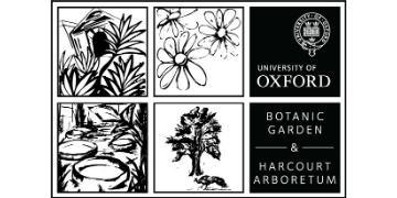 University of Oxford Botanic Garden and Arboretum logo
