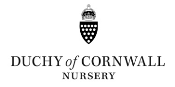 Duchy of Cornwall Nursery logo